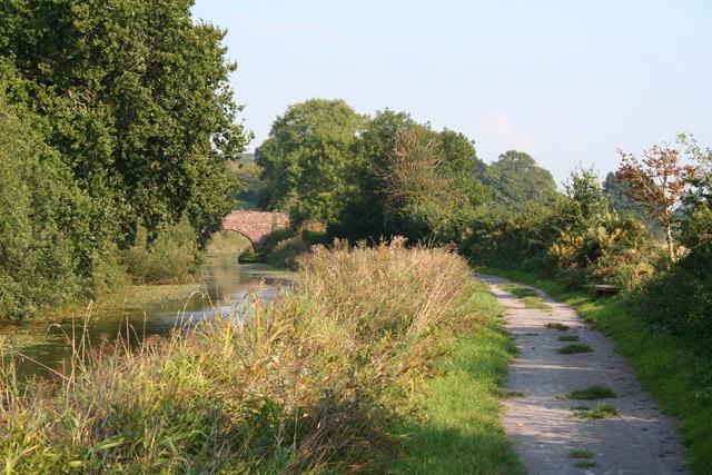 Halberton: the Grand Western Canal near Sellake Bridge