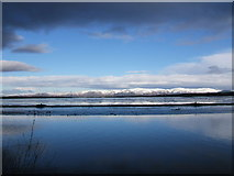 NS9382 : The Ochil hills from the River Carron by bob connelly