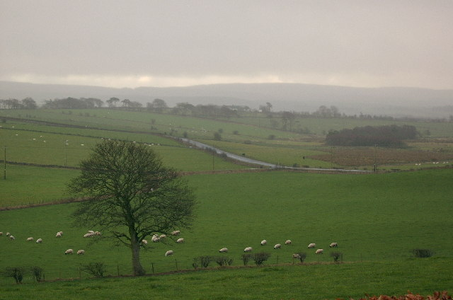 Ayrshire countryside