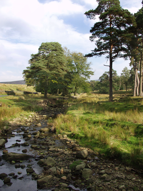 Trough Brook, Trough of Bowland