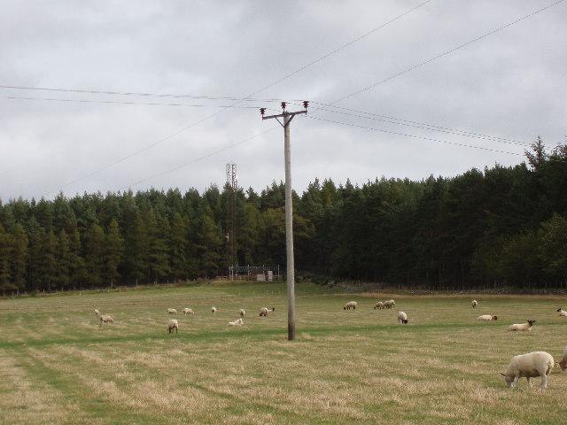 Farmland and Modernisation