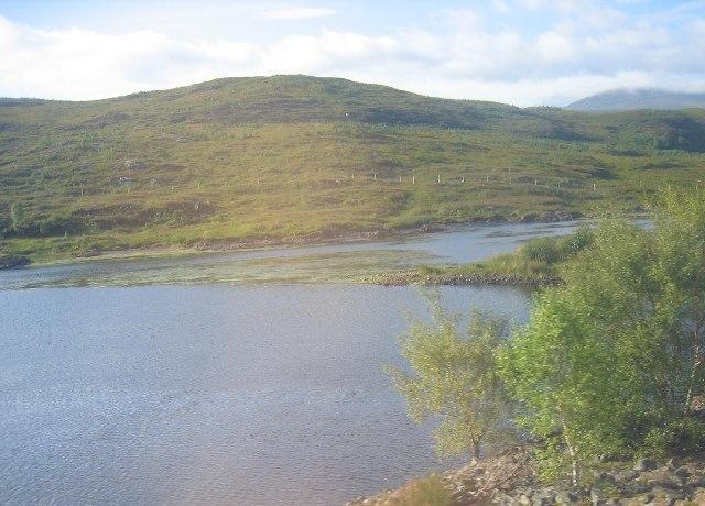 Head of Loch Luichart