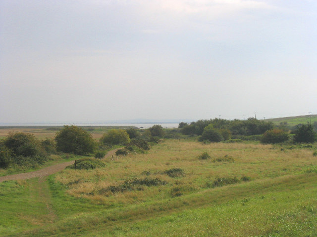 Stanford Marshes, Essex