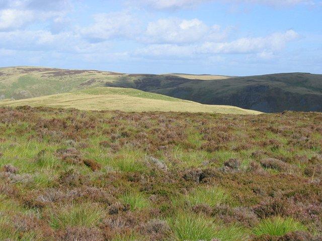Moorland above Glen Eagles.