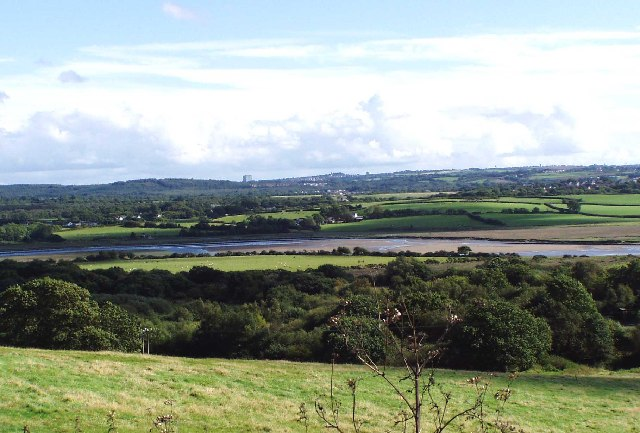 Loughor Estuary, Near Llangennech