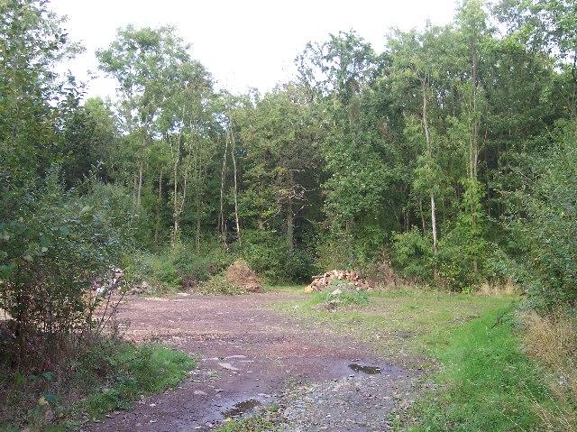 Peghouse Wood