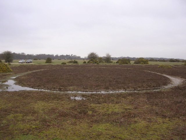 Circular feature near Moonhills car park, New Forest