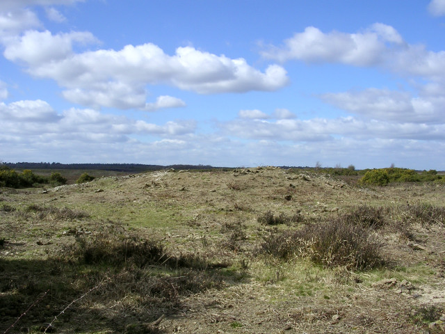Tumulus north of Setley Pond, New Forest
