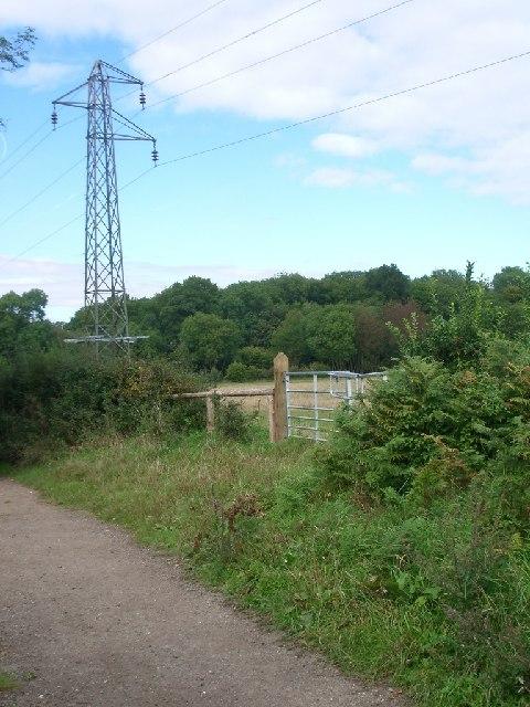Pylons east of bridleway