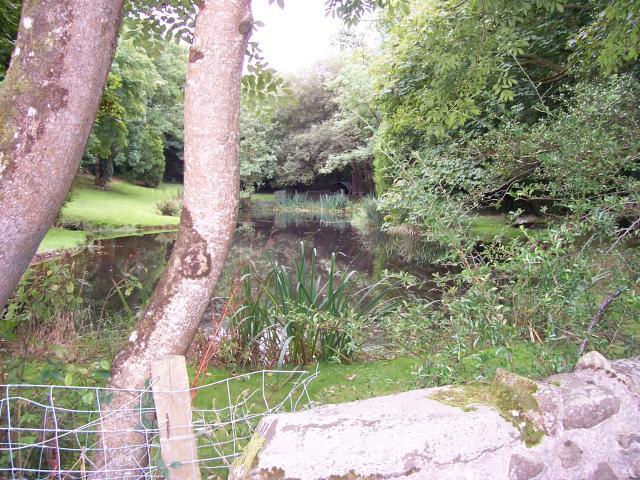 Felin Bontbren pond