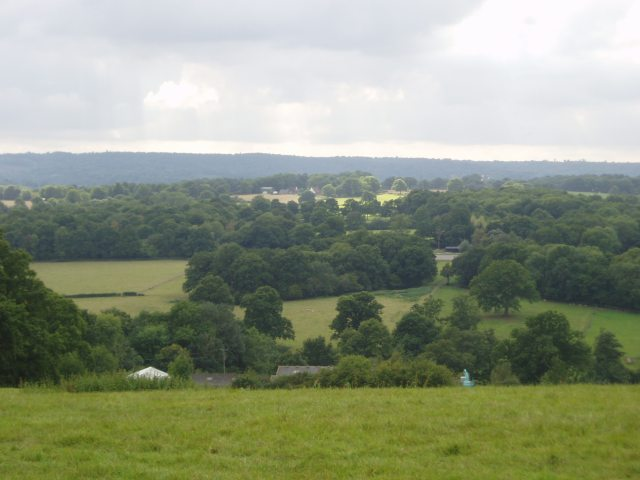 Bassett's Manor fields