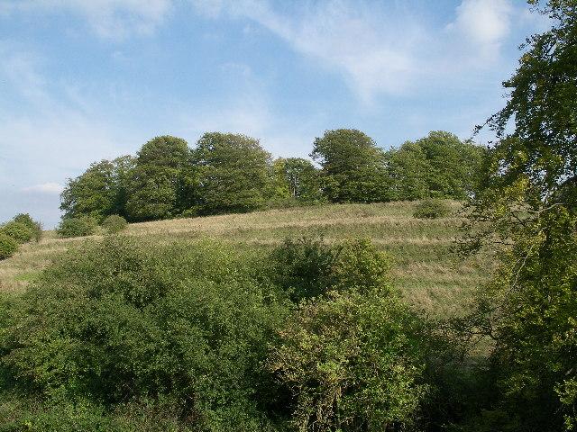 Arn Hill