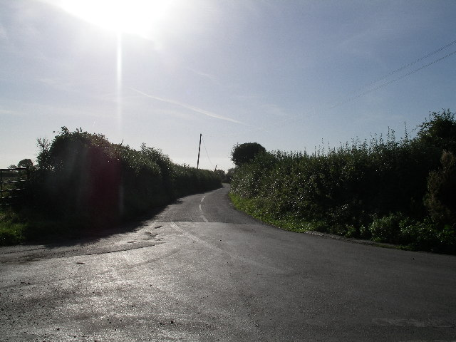 Millaway Lane near Goosey