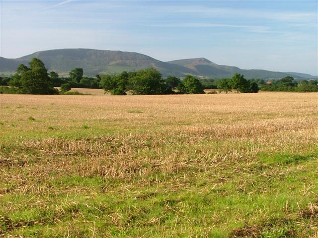 Little Broughton Fields
