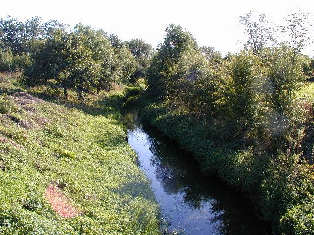 River Strine.