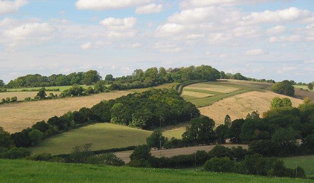 Northeastern slope of Green Hill, Blackdown