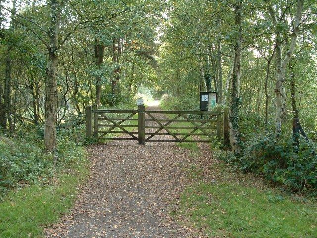 Liss Riverside Railway Walk, Liss Forest, Hampshire