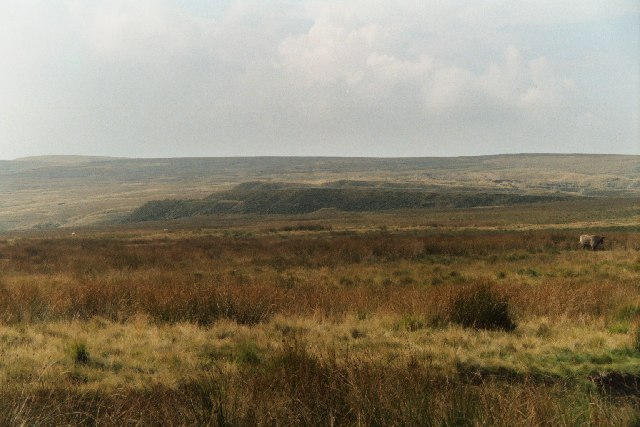 Spoil heaps of the disused Ding Quarry on Rooley Moor, Lancashire