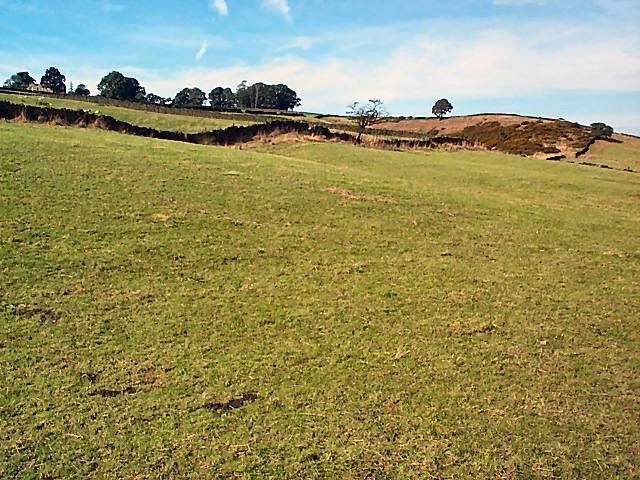 Black Hill near Keighley