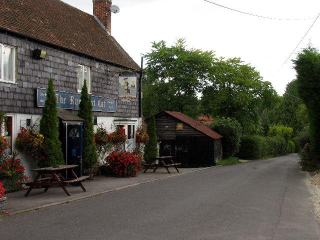 Country Road near Enborne