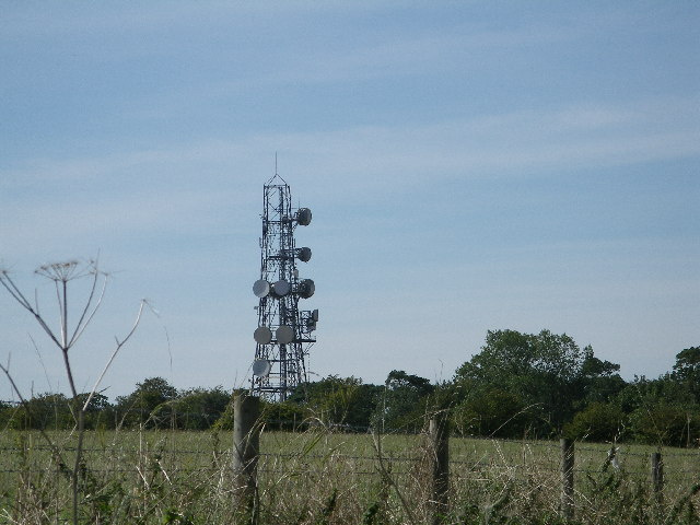 Radio mast at Sparsholt Firs