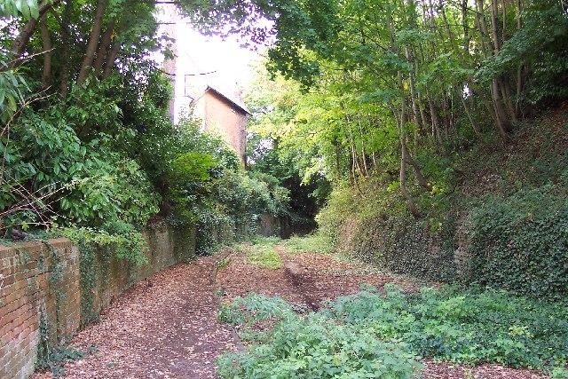Derelict road at Worplesdon