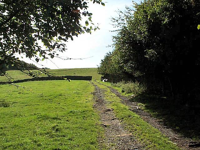 Farm track, Steeton Moor