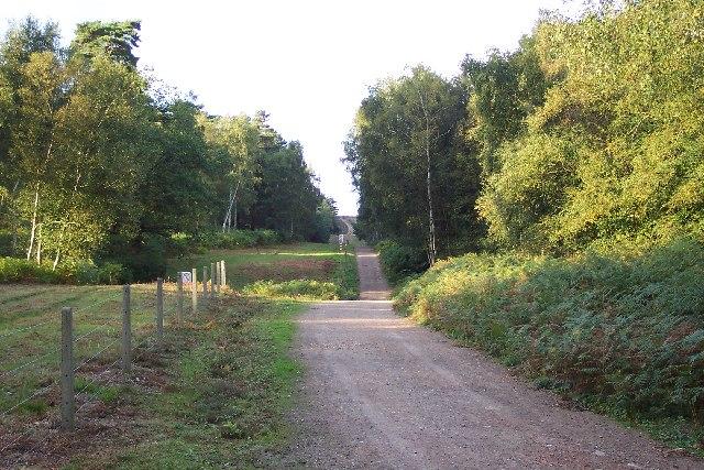 Boundary of the army training area near Henley Park