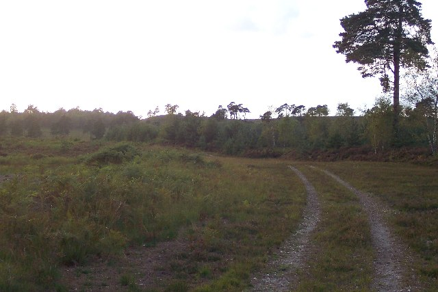 Army training area on Pirbright Common