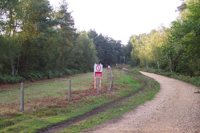 Army training area at Pirbright Common