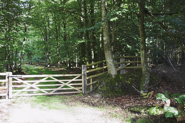 Entrance to Wooson's Hill Inclosure