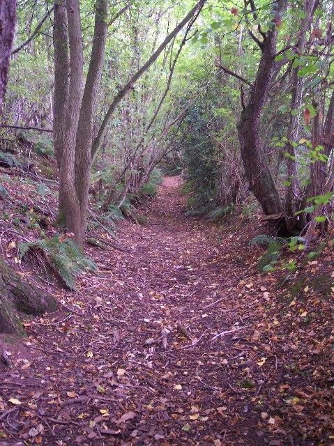 Holloway near Broad Dingle