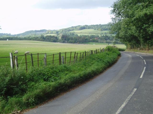 Tandridge Lane towards the North Downs
