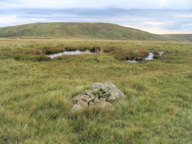 Summit Plateau of Cefn y Cylchau