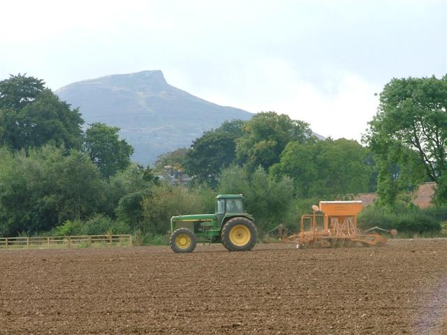 Farm Working, Pinchinthorp