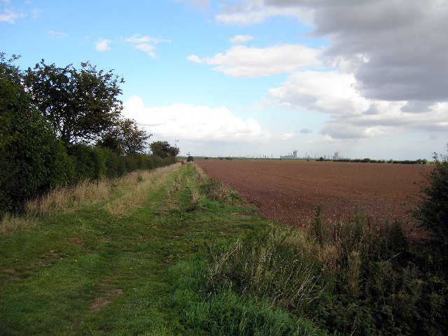 Looking North from East Marsh Road