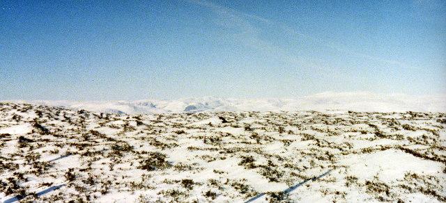 Sturdy Hill