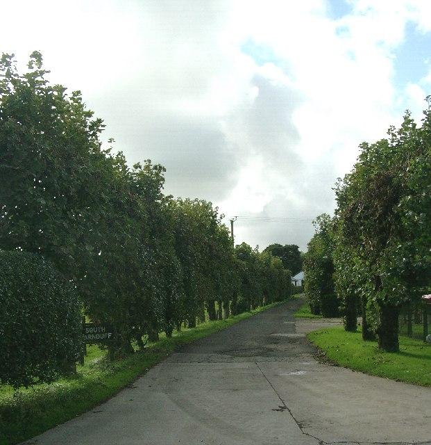 South Carnduff Farm roadend