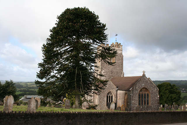 Burlescombe: church