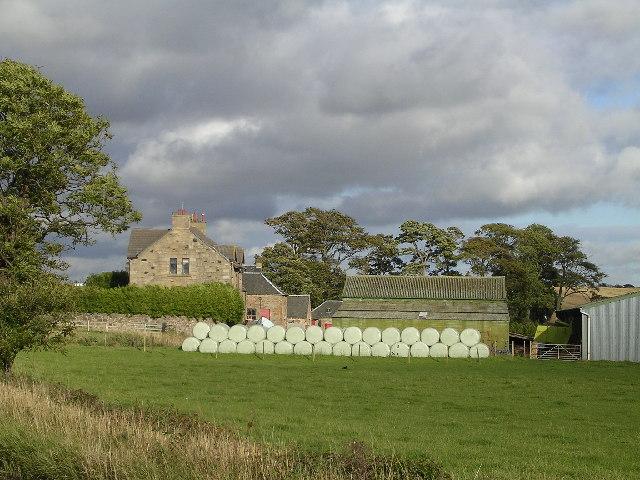 Loch Farm