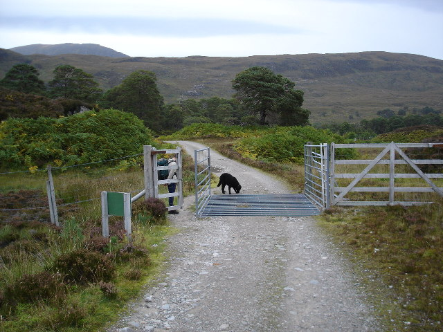 Cattle grid on Affric track