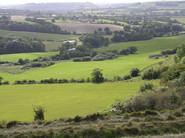 View south across Balmers Coombe Bottom from Rawlsbury hillfort