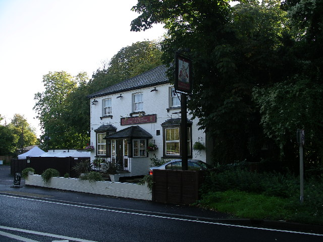 The Volunteer, Grove