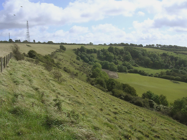 Bulbarrow Hill and Balmers Coombe Bottom