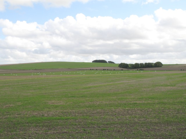 Site of Battle of Roundway Down