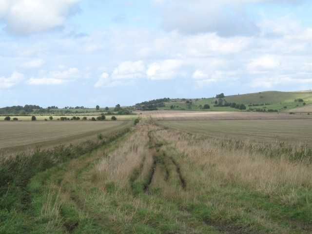 Byway across Roundway Down