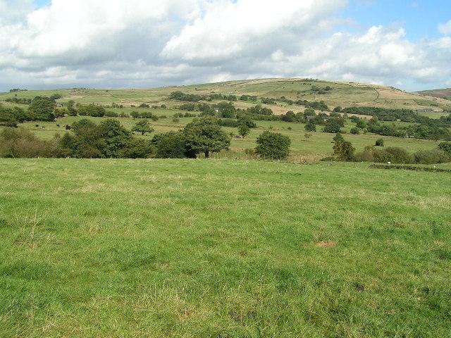 Towards Matley Moor