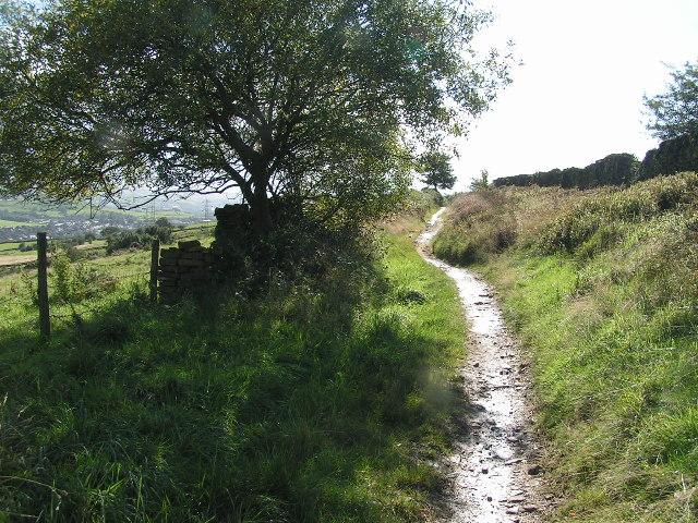 Bridleway to Broadhurst