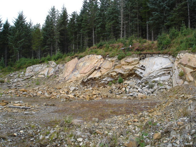 Quarry in the forestry