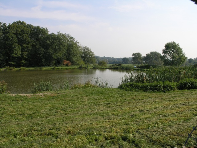 Fishing Lake, near Godstone